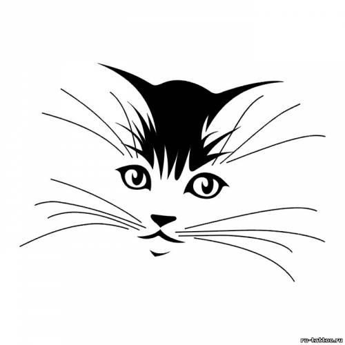 Эскиз татуировки котенка