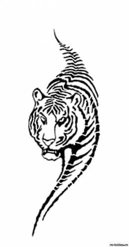 Тату кошек тату тигра на плечо