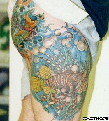 Татуировки рыб фото татуировки рыбы